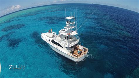 blue dive superb scuba liveaboards from port douglas blue dive