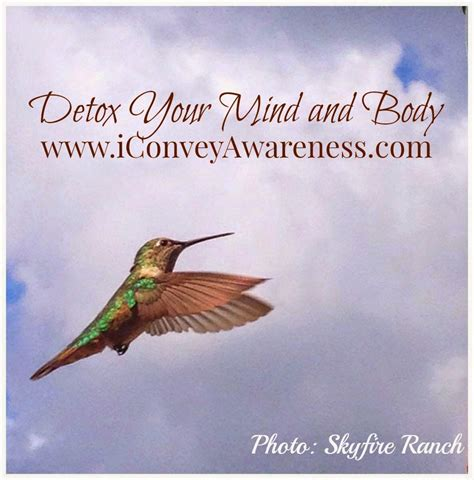 Detoxing Your Mind And by Conveying Awareness With David Detox Your Mind