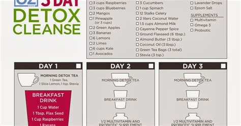 Dr Oz Clean Detox Menu by Pin Up Kitten Review Of Dr Oz 3 Day Detox Cleanse