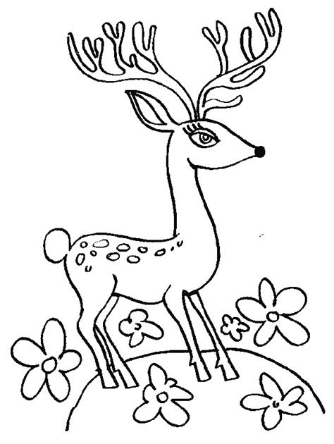 free coloring pages of cindy lou who