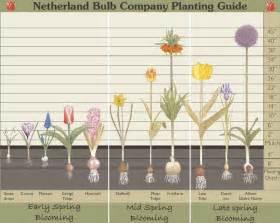 Perennial Garden Plans Zone - planting depth