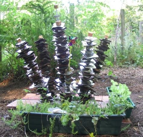 tin can garden 17 best images about tin can garden on