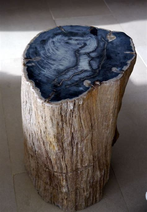 petrified wood table furniture pinterest log end