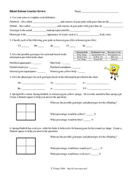 Genetics Worksheet Answers by Answers To Genetics Allele Traits Worksheet