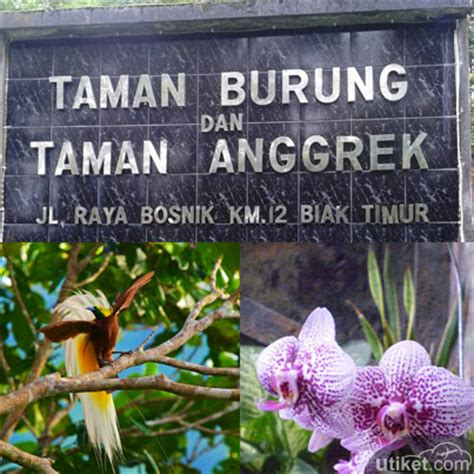 Harga Masuk Taman Anggrek tiket pesawat jakarta cgk medan kno utiket