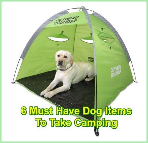 must dogs dogs cing 6 must items to take cing