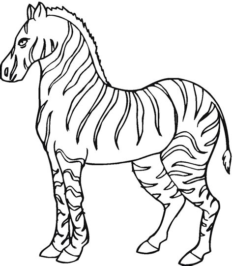 zebra template printable 40 zebra templates free psd vector eps png format