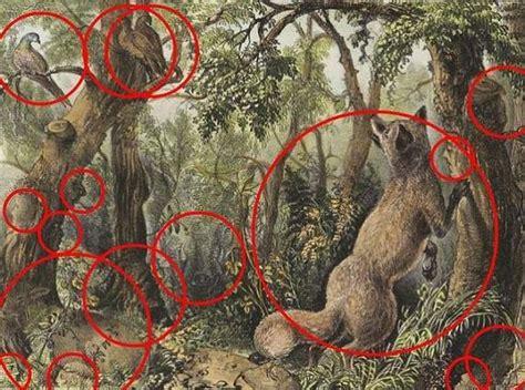Imagenes No Tan Ocultas Del Vaticano | hay 16 caras de animales y humanos ocultas en este dibujo