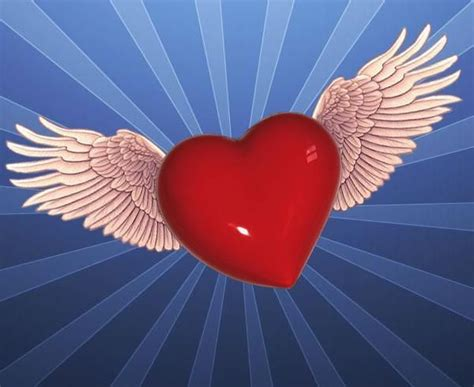 imagenes de corazones con alas y frases 71 best images about imagenes de amor on pinterest te