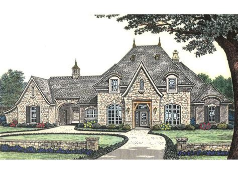 luxury mansion plans luxury lake view house plans house plans home designs