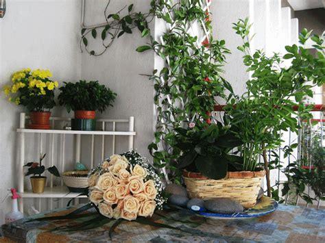 come fare un balcone fiorito l angolo verde il terrazzo di pane e