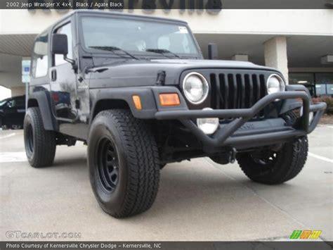 2002 Black Jeep Wrangler 2002 Jeep Wrangler X 4x4 In Black Photo No 46533609