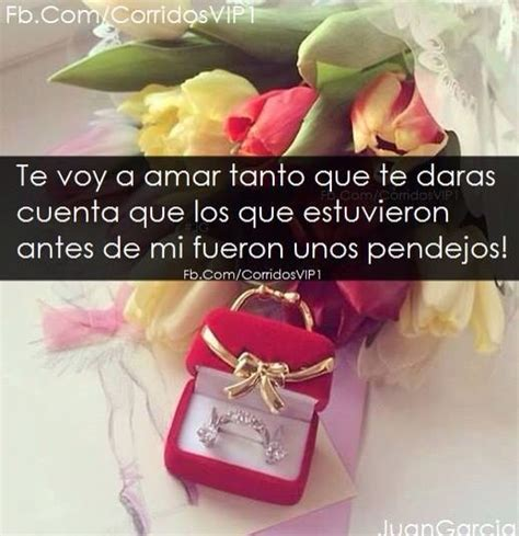imagenes vip enamorados 17 best images about corridos vip on pinterest quotes