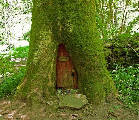 Tree With A Door 17 beautiful home doors enpundit