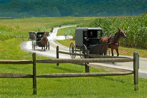 dutch country 25 b 228 sta id 233 erna om lancaster county pennsylvania p 229