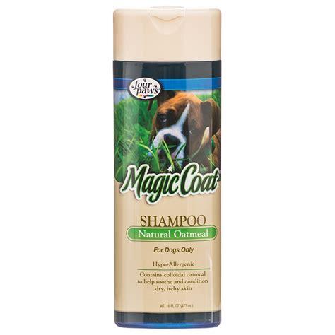 organic dogs shoo newhairstylesformen2014