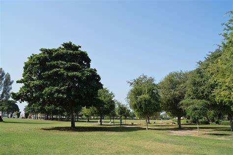 safa park guide propsearch dubai