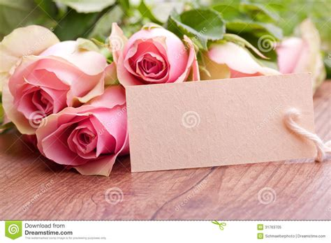 Free Pink Gift Cards - pink roses and gift card royalty free stock photo image 31763705