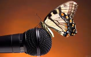 Microphone Wallpapers High Quality   Download Free
