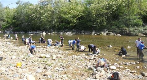 oro italia piemonte le rive dei fiumi affollate dai cercatori d oro