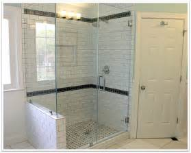 frameless glass shower doors are sophisticated