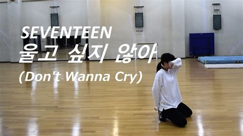 tutorial dance seventeen don t wanna cry seventeen 세븐틴 울고 싶지 않아 don t wanna cry dance practice
