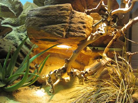 fake rock cavebasking spot   reptile cage