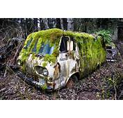 Abandoned Mossy Old Ford Econoline Van