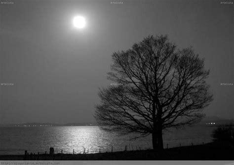 imagenes en blanco y negro de la luna noches de luna llena eloy uriarte brizuela artelista com