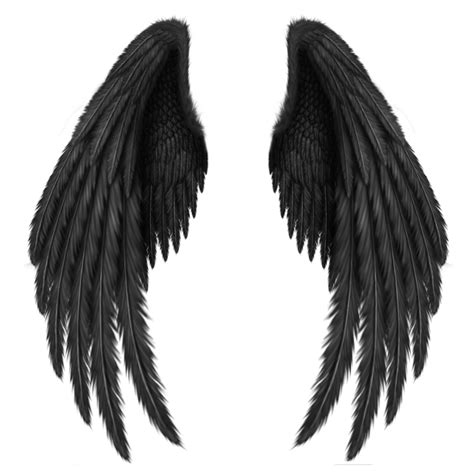 wing black transparent black wings png clipart picture artistically