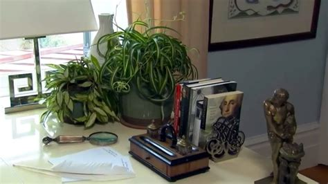 air purification house plants  home  p allen