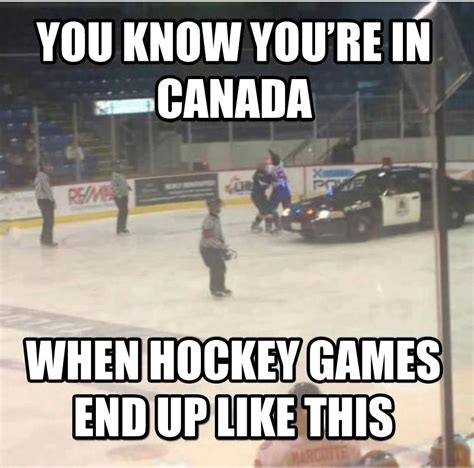 Canada Hockey Meme - only in canada 2 the tango