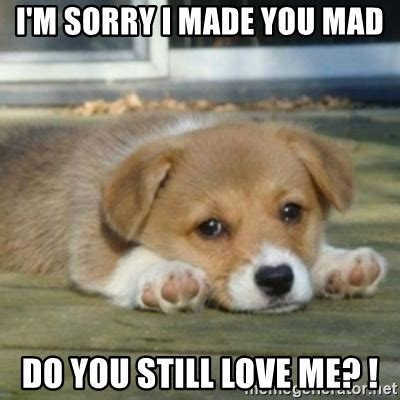 Im Mad At You Meme - i m sorry i made you mad do you still love me sad