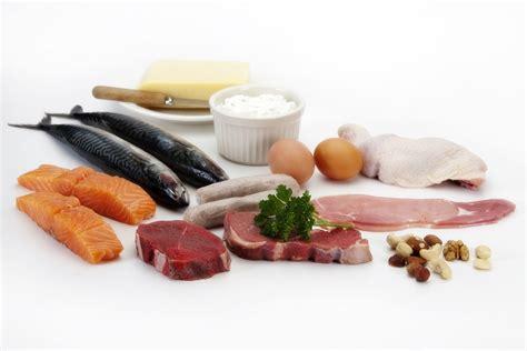protein kidney disease protein and kidney disease sense of it all