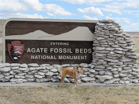 agate fossil beds national monument april 2016 the mostly true adventures of lupe