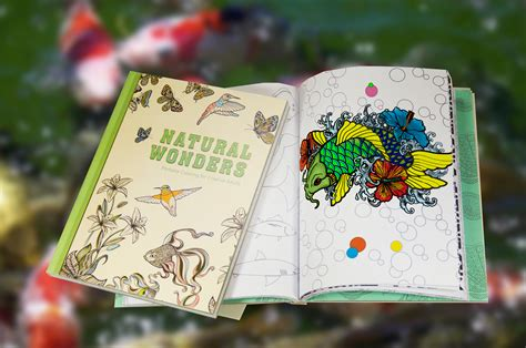 benefits of coloring for adults why coloring books are here to stay the bookpal