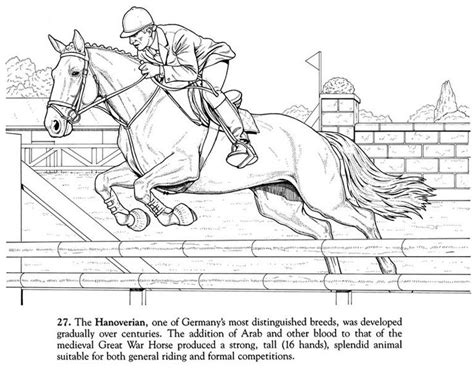 horse coloring page of hanoverian chion coloring