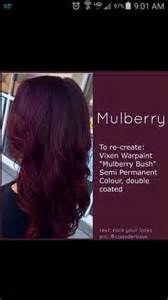 mulberry hair color 1000 images about hair on hair