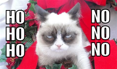 Ho Meme - ho ho ho try no no no grumpy cat know your meme