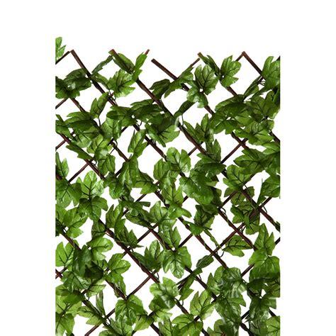 traliccio per traliccio con foglia edera sintetica 120x180 cm prezzo e