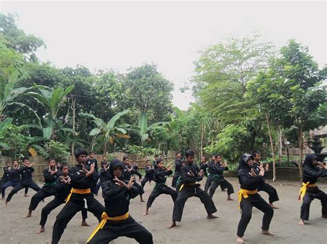 Baju Silat Pagar Nusa silat pictures posters news and on your pursuit hobbies interests and worries