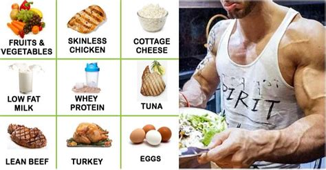 best protein to build and lose 10 foods to help you quickly build and lose