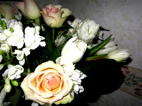 regalare fiori on line regalare fiori on line in italia e all estero con