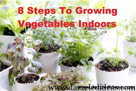 17 best images about indoor vegetable gardening on