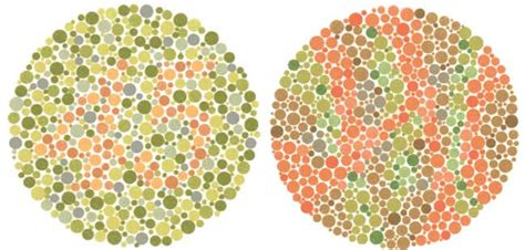 color blind jokes joke of the day daily jokes
