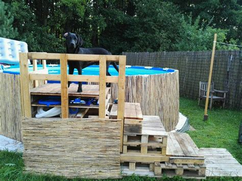 diy swimming pool dog pallet stairs  ground pool