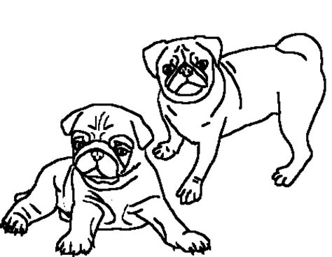 pug coloring pages clipart best