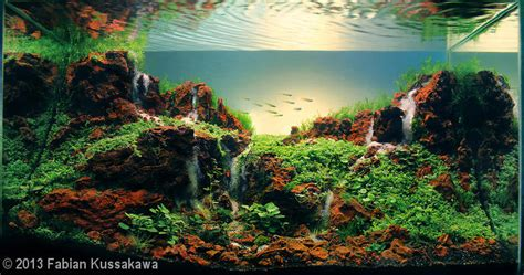 Aquascaping Materials by 2013 Aga Aquascaping Contest 353