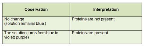 m protein test 33 food test 4 biuret test for proteins biology notes