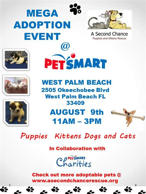 a second chance puppies and kittens rescue welcome to a second chance puppies and kittens rescue autos post